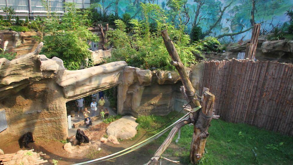 Zoo Rostock Corona